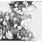Гортензія. Hortensia. 29x41, 2014.