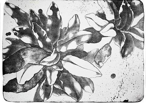 Isatis tinctoria. 29x41, 2014. Показать перевод