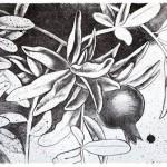 Колір граната. Pomegranate color. 29x41, 2014.